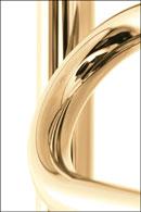 Полотенцесушитель Сунержа  - покрытие  Золото